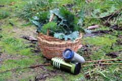 Galiano Harvest and Herbal Workshop 2016