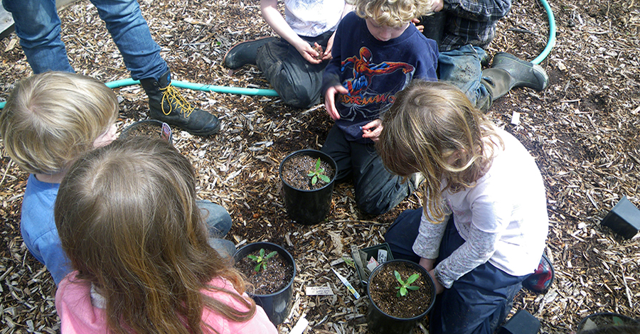 Children with native plants