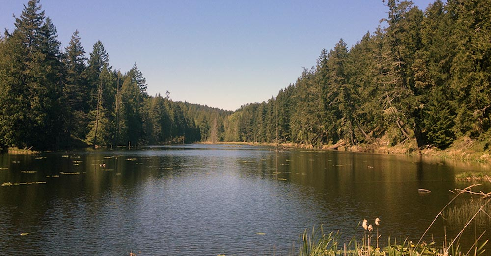 Laughlin Lake