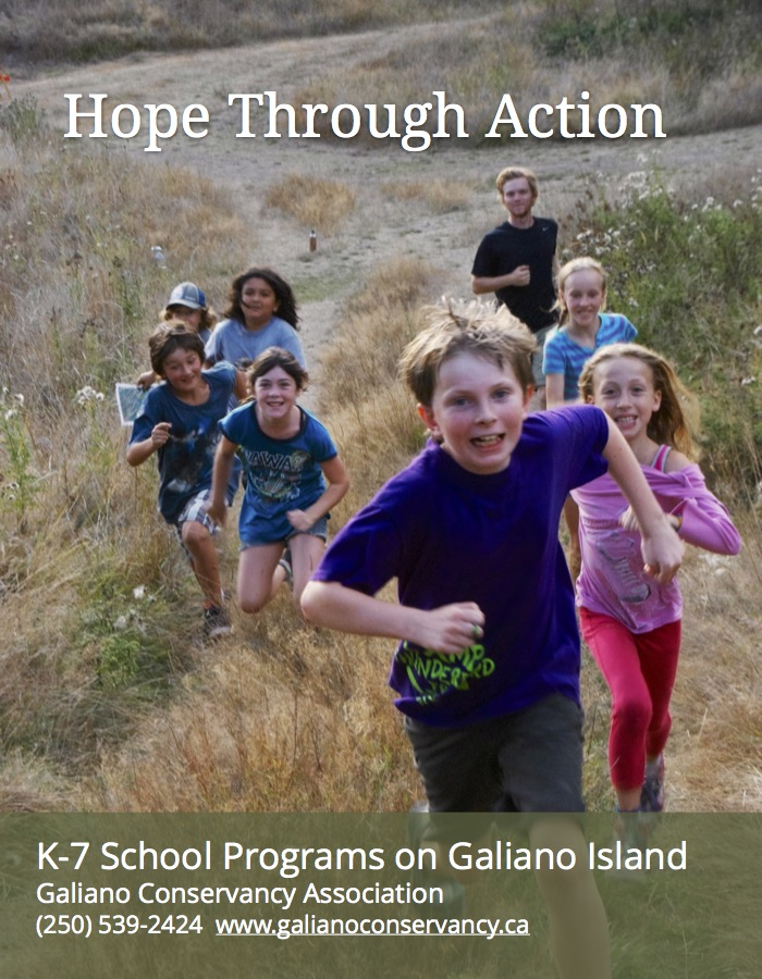 Elementary school program poster