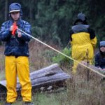 Forest forensics in the rain. Photo: Christopher King