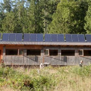 Solar array, Millard Learning Centre
