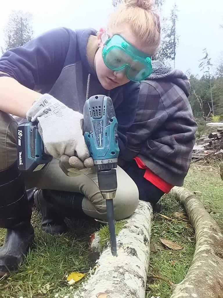 Making homes for shiitake fungus